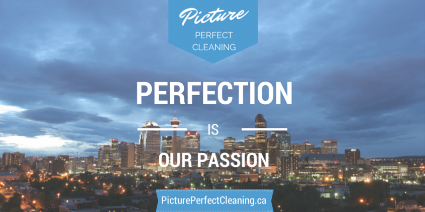 Picture perfect cleaning recommends germ safe havens