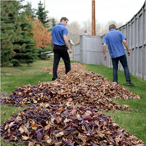 Two PPC Employees Raking Leaves in a Commercial Cleaning | Picture Perfect Cleaning